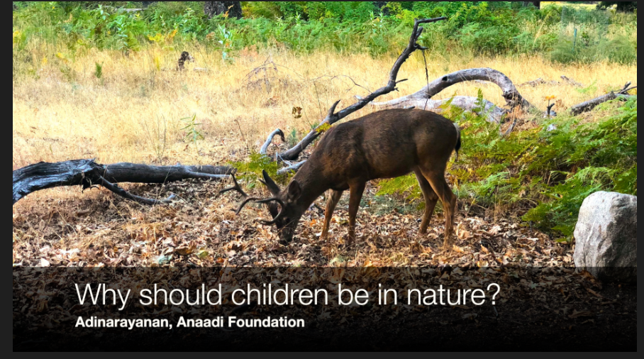 It is very important to introduce and expose children to nature.