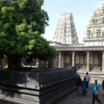 A curse for Maa Parvati or a boon for us? Visit to Ekambareswar Temple